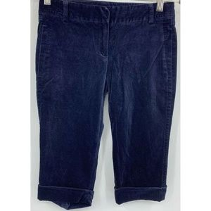 Theory womens 2 Bermudas shorts velvet navy blue